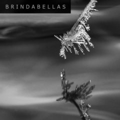 Brindabellas